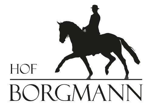 Hof Borgmann: Pferde-Auktion 2020